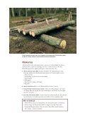 Fångstvirkesfällor mot barkborrar - Holmen - Page 7