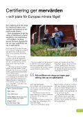 Certifierad skog enligt FSC och PEFC - Holmen - Page 5