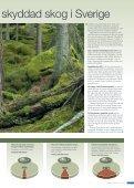 Annika öppnar fönstret mot framtiden 18 16 12 11 - Holmen - Page 7