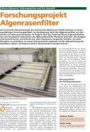 Forschungsprojekt Algenrasenfilter - Institut für Umwelt und ...