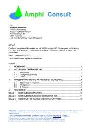 Amphi Consults notat af 7. januar 2013. Foreløbig vurdering af ...