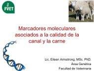 Marcadores moleculares asociados a la calidad de la canal y ... - Inia