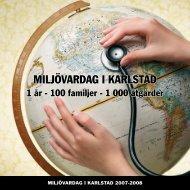 Här kan du ladda ner projektsammanfattningen (pdf) - Karlstads ...