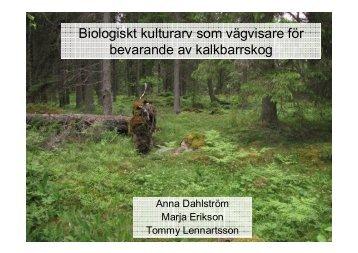Biologiskt kulturarv som vägvisare för bevarande av kalkbarrskog
