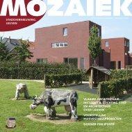 Mozaïek jaargang 1 nr 2 - oktober 2004 - Stad Leuven