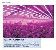 Teelt van de toekomst (Deliscious) - Philips