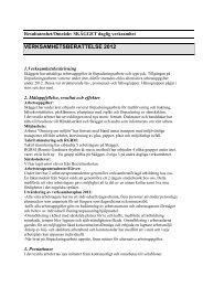 Skägget verksamhetsberättelse 2012 (PDF, 70 kB)