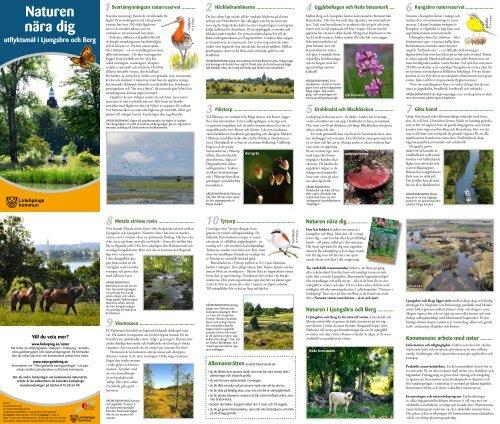 Naturen nära dig - Ljungsbro Berg - Linköpings kommun