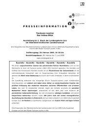 Weitere Informationen (PDF) - Linz 2009
