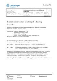 Borreliainfektion hos barn- utredning och behandling