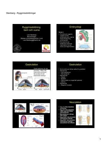Kongenitala missbildningar, radiologiska fynd