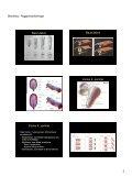 Kongenitala missbildningar, radiologiska fynd - Page 2