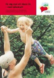 Sammanfattning av programmet 2001-2010 - Landstinget i ...