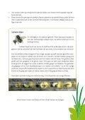 Kriebel- en krabbelbeestjes Bouw je eigen insectenhuis - LNE.be - Page 5