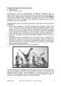 Roofvogels en hun leefmilieu: handleiding - Lne.be - Page 5