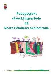 Om det pedagogiska utvecklingsarbetet på Norra ... - Lunds kommun