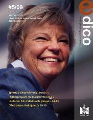 Splittrad tillvaro för ung lärare, s 4 Fadderprogram för ... - Malmö stad