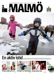 Smidighet och självkänsla Viktiga vägledande val ... - Malmö stad