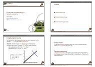 Dynamisk programmering II - Matematik og optimering
