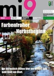 Micheldorf-INFO Nr. 9