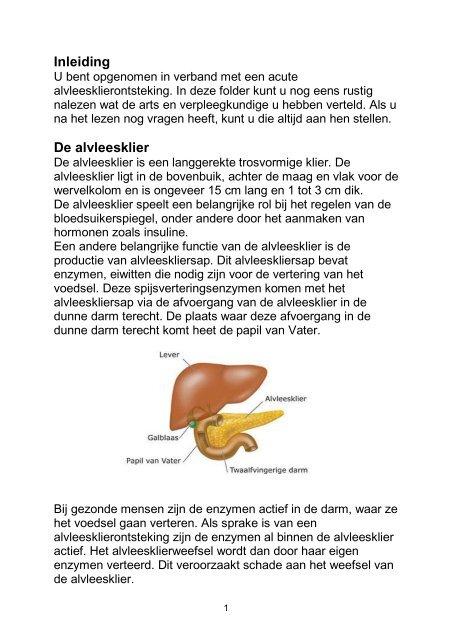 Alvleesklier, acute ontsteking van de - Máxima Medisch Centrum