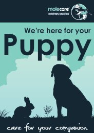 Puppy We're Here For Your - Mole Valley Farmers