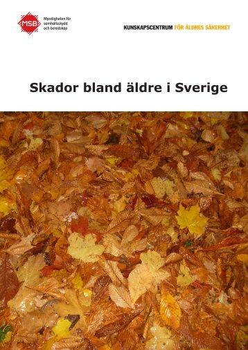 Skador bland äldre i Sverige - Myndigheten för samhällsskydd och ...