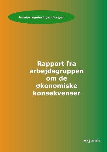 Rapport fra arbejdsgruppen om økonomi - Miljøstyrelsen