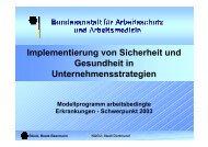 Implementierung von Sicherheit und Gesundheit in ... - NAGU