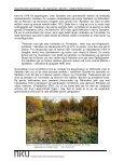 Samiske kulturminner - Page 7