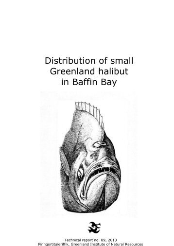 Distribution of small Greenland halibut in Baffin Bay
