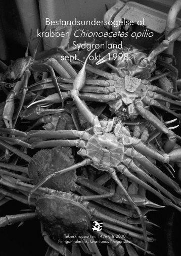 Nr. 14 - 2000 - Bestandsundersøgelse af krabber i Sydgrønland