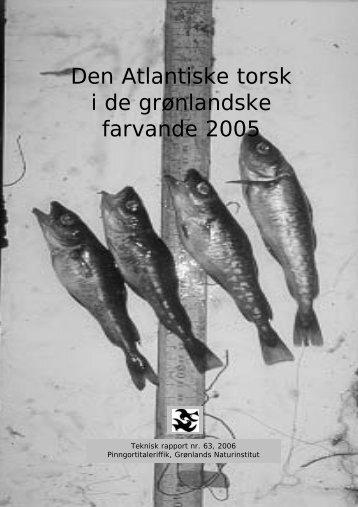 Nr. 63 -Den Atlantiske torsk i de grønlandske farvande 2005