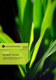 Rapport Ekologiskt i Etiopien - Naturskyddsföreningen