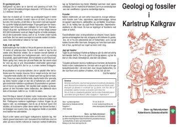Geologi og fossiler i Karlstrup Kalkgrav - Naturstyrelsen