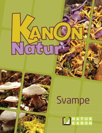"""Kanon Natur - svampe"" som pdf - Danmarks Naturfredningsforening"