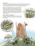 """""""Kanon Natur - svampe"""" som pdf - Danmarks Naturfredningsforening - Page 5"""