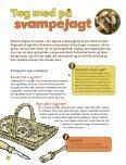 """""""Kanon Natur - svampe"""" som pdf - Danmarks Naturfredningsforening - Page 6"""
