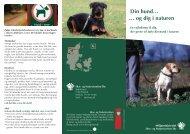 Din hund… … og dig i naturen - Naturstyrelsen