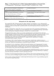 Bilag 1 - VVM-redegørelse for Ny 400 kV ... - Naturstyrelsen