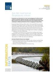 pdf 285 kB - Naturvårdsverket