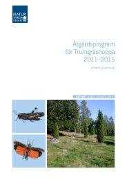 Åtgärdsprogram för Trumgräshoppa 2011–2015 ... - Naturvårdsverket