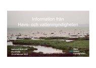 Information från Havs- och vattenmyndigheten, Vårträff 2013 för ...