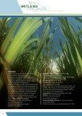 Nieuw leven voor moeras - Staatsbosbeheer - Page 2