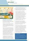 Nieuw leven voor moeras - Staatsbosbeheer - Page 7