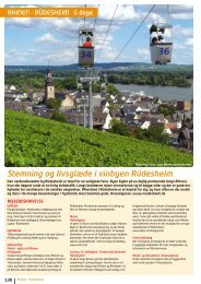 Stemning og livsglæ de i vinbyen Rüdesheim - NILLES REJSER A/S