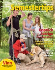 Semestertips 2009 - Publikationer Provisa Sverige AB - Provisa ...