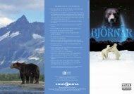 SNABBA FAKTA OM BJÖRNAR - Naturhistoriska riksmuseet
