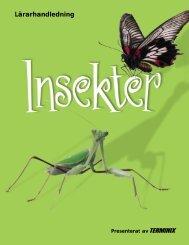 Insekter - Naturhistoriska riksmuseet