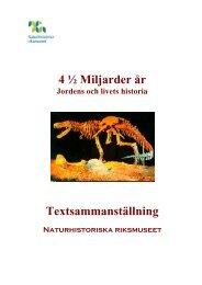 VÄGG 1:1 = 1 - Naturhistoriska riksmuseet